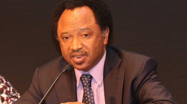 Jonathan Is The Only President That Approved The Technology That Ended His Reign -Shehu Sani